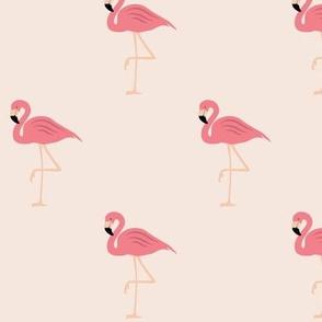 Flamingos on pink