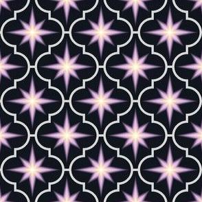 04029202 : crombus star : synergy0012