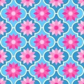 04029487 : crombus flower : pink on blue