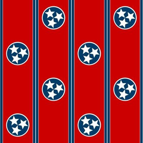 Tennessee Polka Dot ~ Medium
