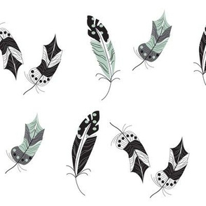 buffalo feathers ©2015 Jill Bull Palm Row Prints