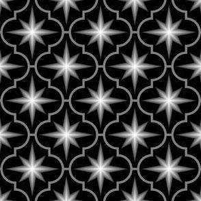 04045919 : crombus star : greyscale