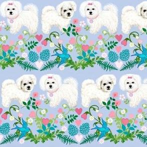 white puppy fabric - Bichon, Maltese, Bolognese, Coton de Tulear, Havnese