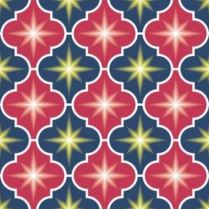 04049020 : crombus star : spoonflower0166