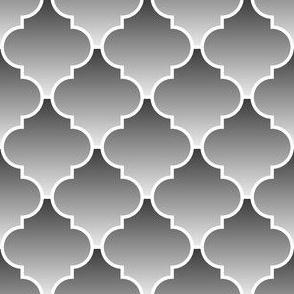 04049280 : crombus ombre : greyscale