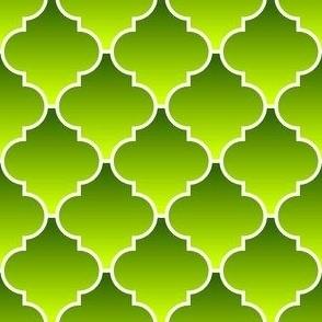 04049554 : crombus flower : synergy0011