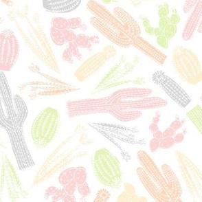 Little Doggie Cacti