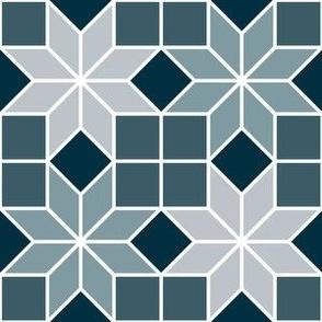 04050048 : crombus star _ autumncolors