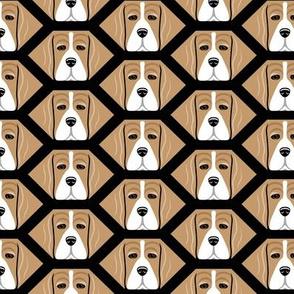 Honeycomb Beagles