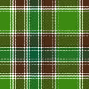 "MacDonald hunting tartan, 6"", modern colors"