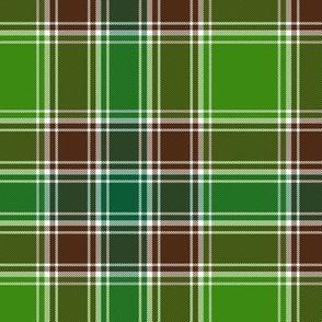"MacDonald hunting tartan, 6"", modern colors"