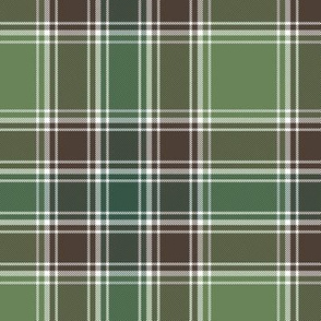 "MacDonald hunting tartan, 6""ancient colors"