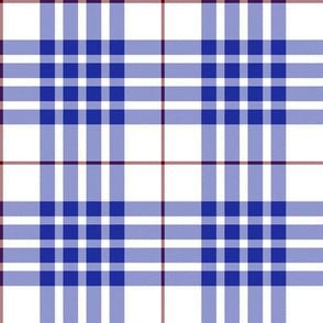 "Buchanan dress blue tartan, 4"""