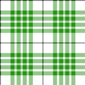 "Buchanan dress green tartan, 4"""