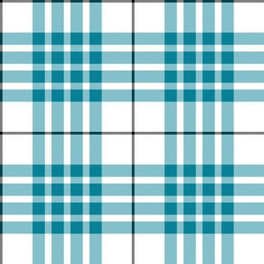 Buchanan turquoise dress (Canadian) tartan