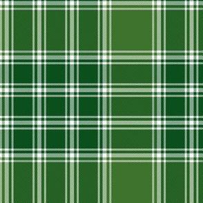 """MacDonald, Lord of the Isles tartan, 6"""" green"""