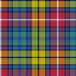 """Buchanan Ancient tartan - 6"""" cool modern colors"""