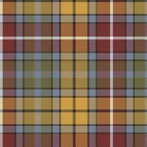 "Buchanan Ancient tartan, 6"" weathered colors"