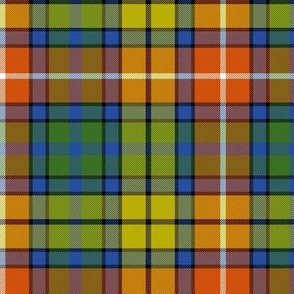 "Buchanan Ancient tartan - 6"" warm modern colors"