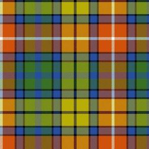 "Buchanan Ancient tartan - 6"" warm modern colors"