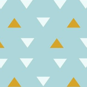 SW Baby Coordinate Triangles