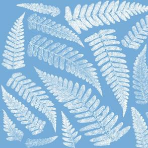 Ferns on blue