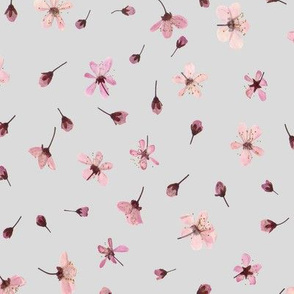 Cherry blossoms grey