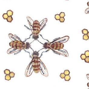 Dancing Bees