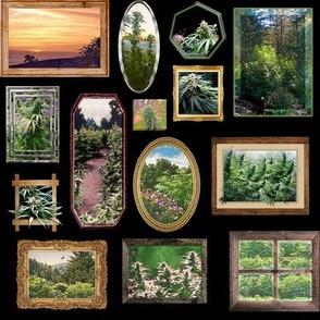 Cannabis As Framed Art (R)
