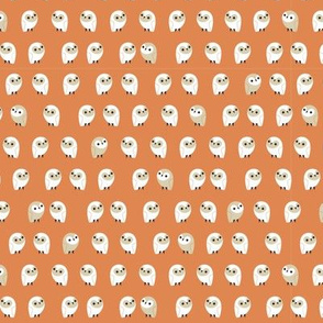little owls - pumpkin