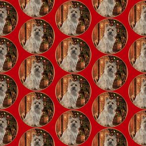 Cairn Terrier Christmas