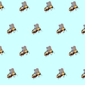 biggiebees no dots