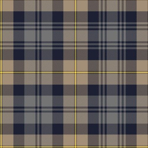 "Gordon Highlanders tartan, 10"" weathered colors"