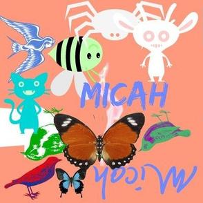 micah 872222222222
