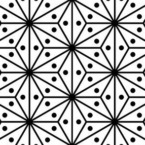 04125931 : SC3C + spots 12