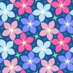 04128542 : SC3C : inverse gradient