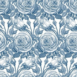 Perle des Jardins ~ Lonely Angel Blue and White on White
