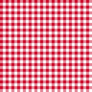 holly-berry gingham