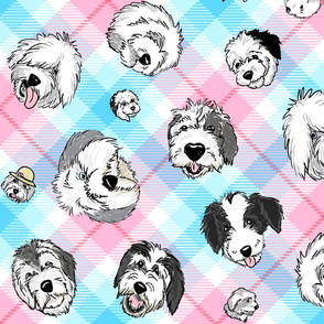 OES Faces Pink & Blue Plaid