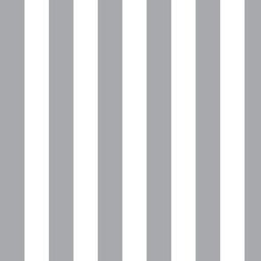 """Light Gray 3/4"""" Vertical Stripes"""