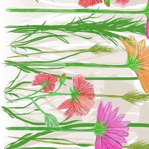 Wildflower Border - Sugar and Spice