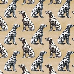 Sitting Dalmatians - tan