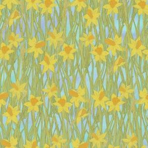 Darling Daffodils