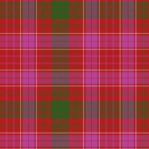 "Ross clan tartan variant, 8"" modern colors"