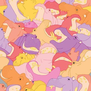 Laughing Hippos - Warm Colours
