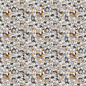 Sheepdogs On Watch-Orange TINY