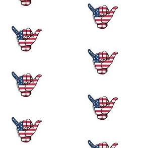 + hang 10 america +