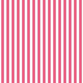 stripes vertical hot pink