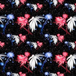 July 4-20 Fireworks