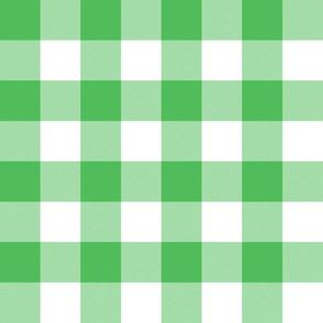 """1"""" Spearmint green gingham"""